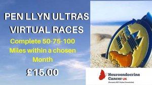 Virtual Races Image